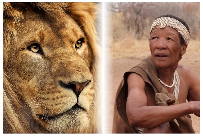 Viaje Iniciático a Sudáfrica del 2 al 16 de nov. de 2014
